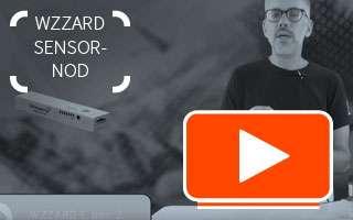 Wzzard video